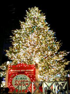 クリスマスツリーin  お台場
